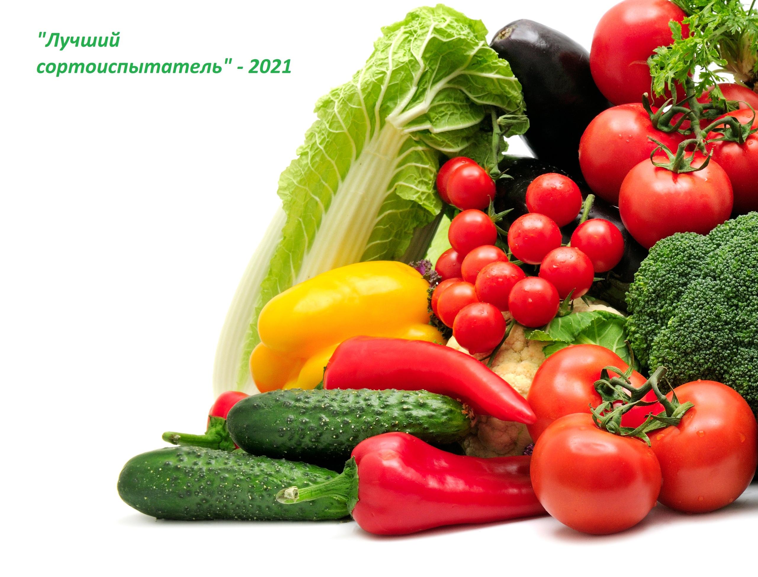 Объявляем о проведении регионального этапа конкурсного сортоиспытания сортов и гибридов овощных культур среди обучающихся образовательных организаций