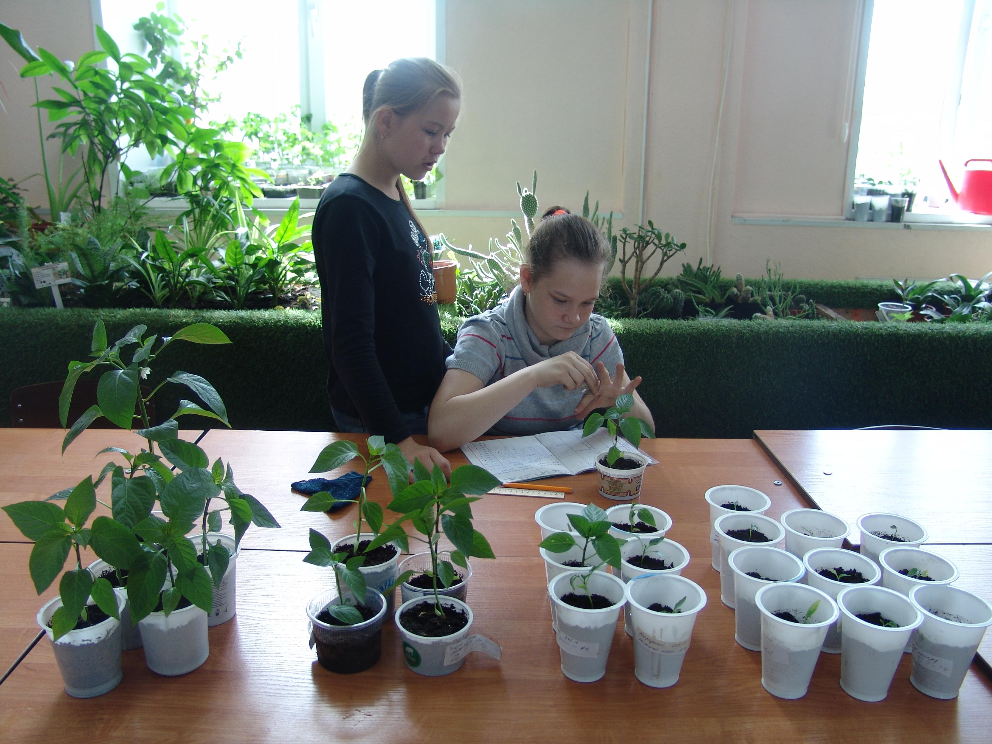 Клуб «Юный натуралист» возобновил свою работу