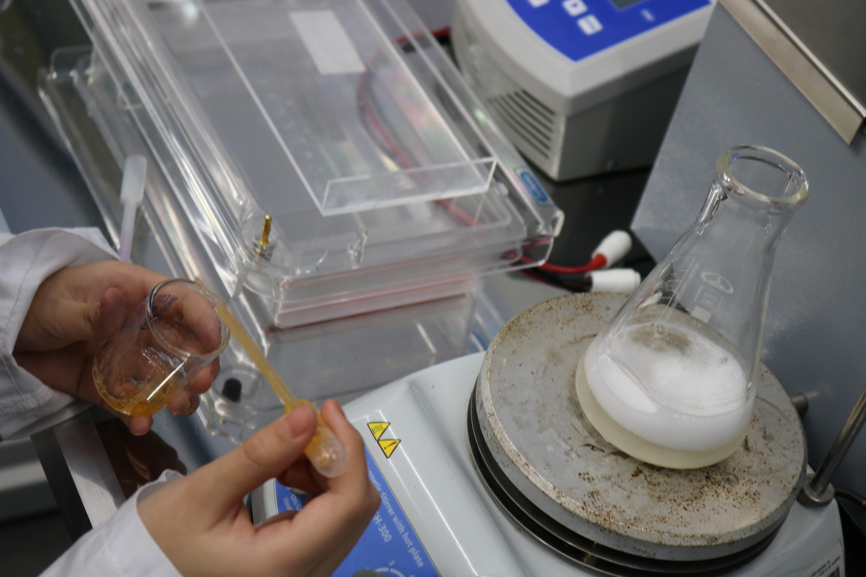 В лаборатории технопарка «Кванториум «Хакасия» продолжается работа над кейсом «ДНК»